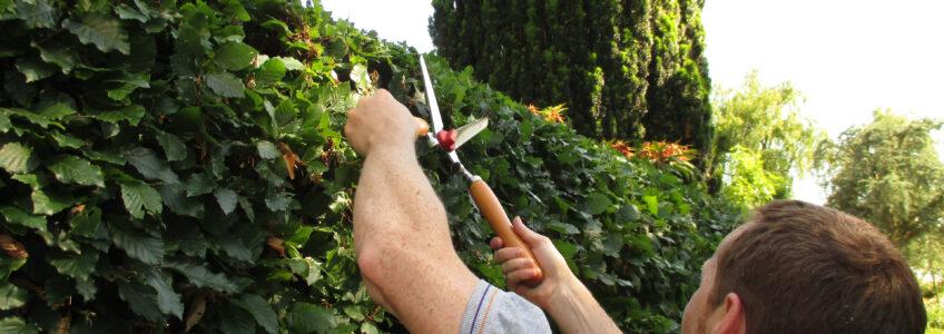Timmermansoog ook handig bij tuinieren…