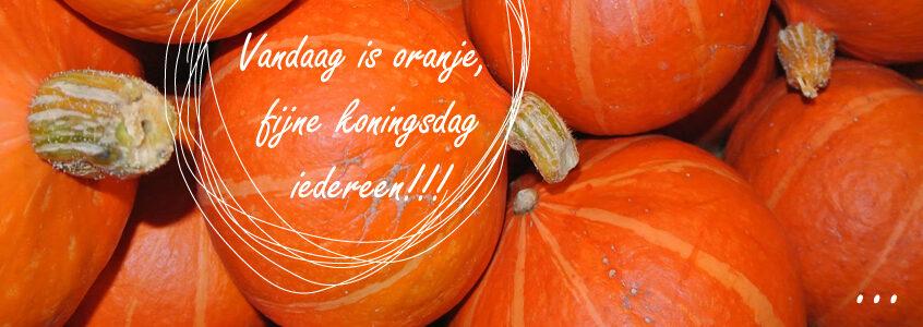 Vandaag is oranje…