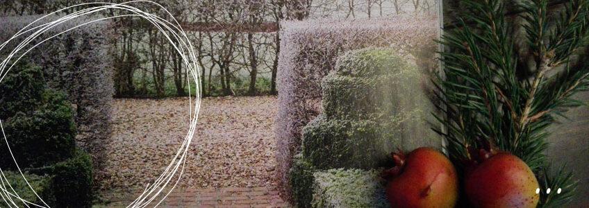 Hoe heurt het eigenlijk in de tuin…